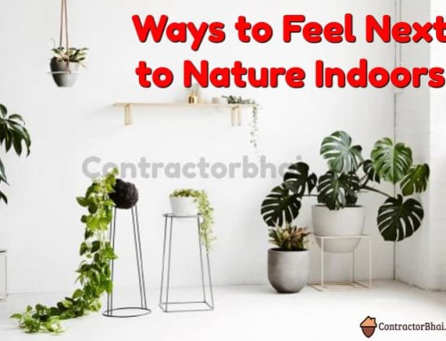 Ways to Feel Next to Nature Indoors