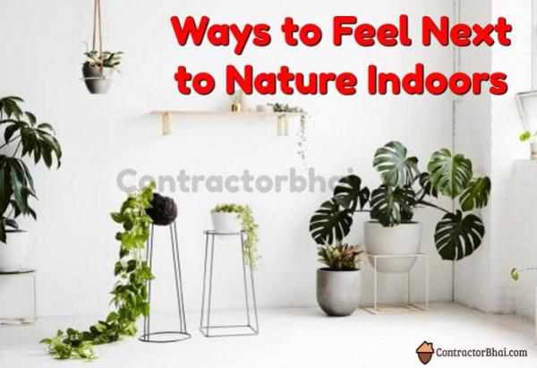 Contractorbhai-Ways-to-Feel-next-to-Nature-Ind