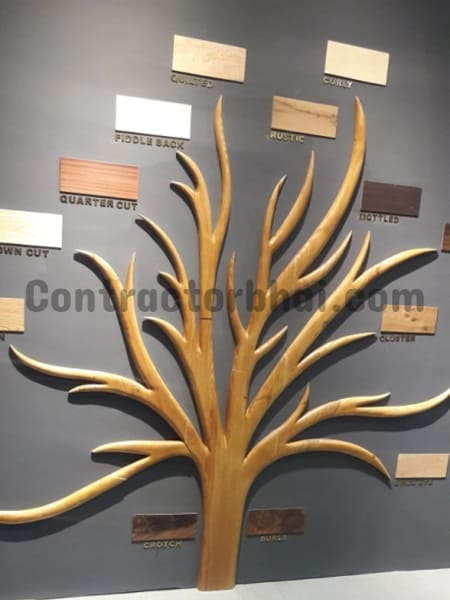 Types-of-Veneer-Tree-Acetech-Contractorbhai