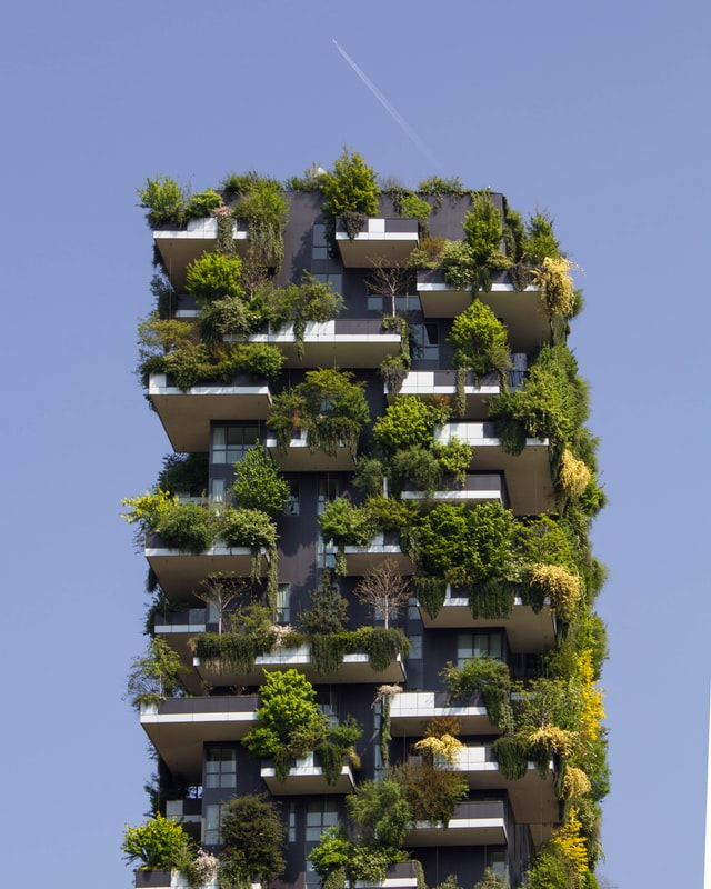 Sustainable Interior Design for India